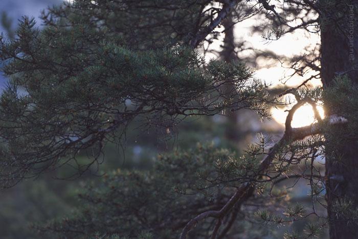 norway15_092_blog