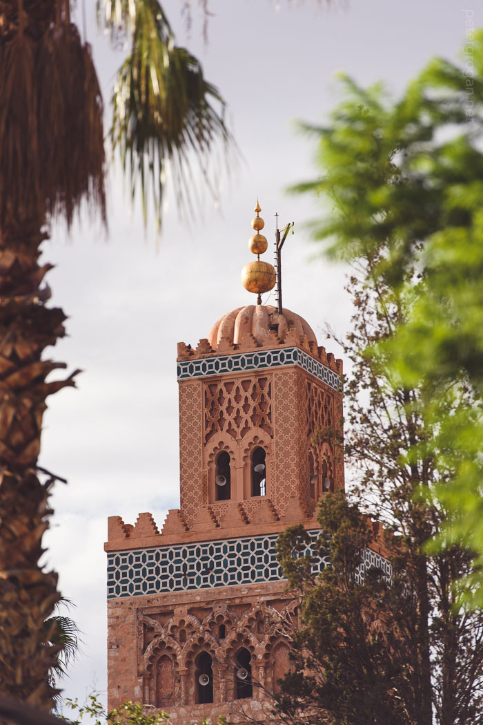 marrakech2015_005_blog