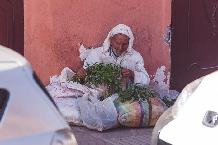 marrakech2015_078_blog
